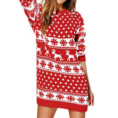 Animal Print Round Neck Casual Long Christmas Sweater Dress