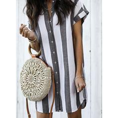 Striped Shirt collar Above Knee Shift Dress
