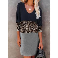 カラーブロック/ヒョウ 長袖 シフトドレス 膝上 カジュアル Tシャツ ドレス