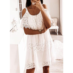 Lace/Solid Short Sleeves Shift Knee Length Casual/Vacation Dresses