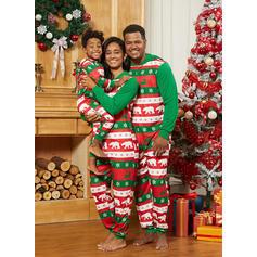 Rena Bear Impressão Família Combinando Natal Pijama