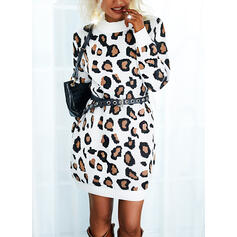 leopard Dlouhé rukávy Casual Rochii