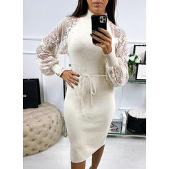 Solid Stand Collar Sweater Dress