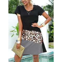 Patchwork/Leopard Short Sleeves Shift Knee Length Casual/Vacation T-shirt Dresses