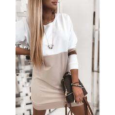 Color Block Long Sleeves Shift Above Knee Casual Sweatshirt Dresses