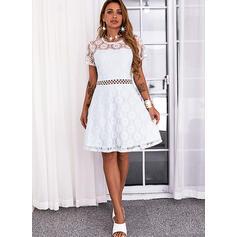 Einfarbig Spitze Kurze Ärmel A-Linien-Kleid Über dem Knie Lässige Kleidung Skater Kleider