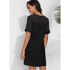 Solid Short Sleeves Shift Above Knee Little Black/Casual/Elegant Dresses