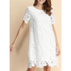Lace/Solid Short Sleeves Shift Knee Length Casual/Party Dresses