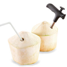 Wayfarer Aço inoxidável Abridor de coco