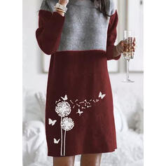 Floral/Color Block/Animal Print Long Sleeves Shift Above Knee Casual Sweater Dresses