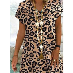 Leopard Short Sleeves Shift Knee Length Casual Dresses