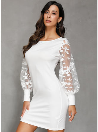 Lace/Solid Long Sleeves Shift Above Knee Casual/Elegant Dresses