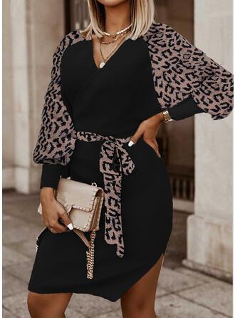 leopardo knit Maniche lunghe Manica raglan A trapezio Lunghezza al ginocchio Casuale Abiti