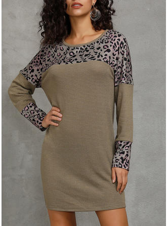 Solid/Animal Print Long Sleeves Shift Above Knee Casual Dresses