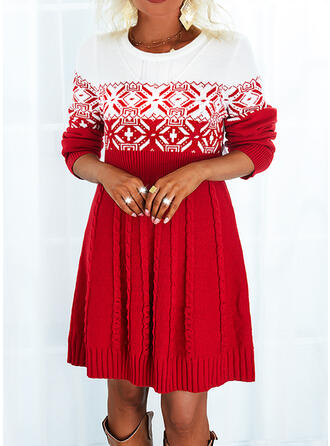 christmas Print Color Block Ronde Hals Sweaterjurk