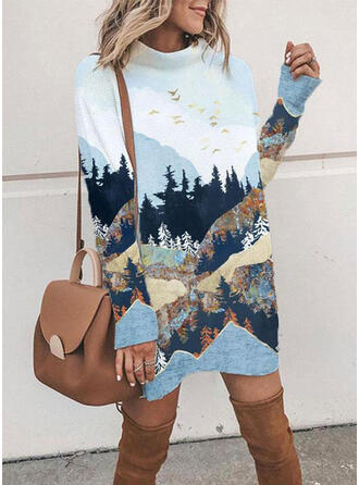 Animal Print Long Sleeves Shift Above Knee Casual Tunic Dresses
