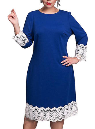Lace Round Neck Knee Length Shift Dress